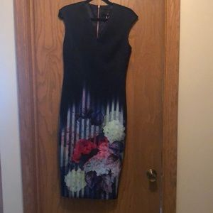 Ted Baker MIdi Dress.  size 3 NWT